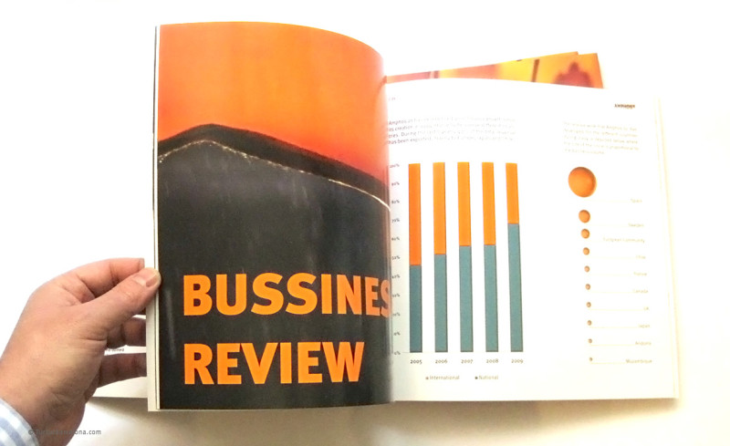 Diseño gráfico y maquetación informe anual, memoria-economica activity report